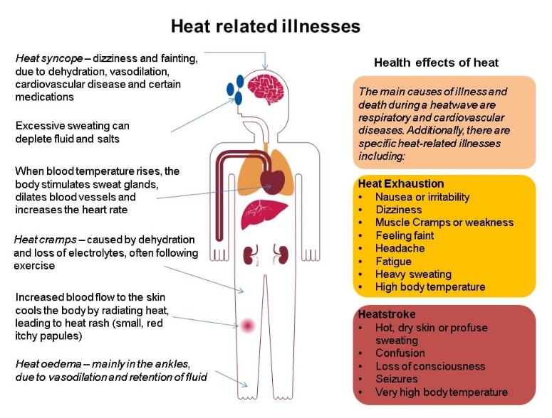 Heat Wave Guidance